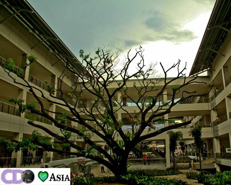 Ayala mall Centrio 7 of 8 Inside Centrio Ayala Mall Cagayan de Oro